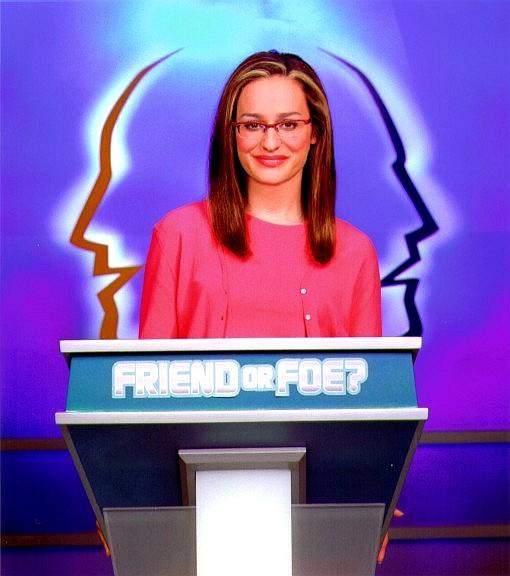 television friend or foe essay